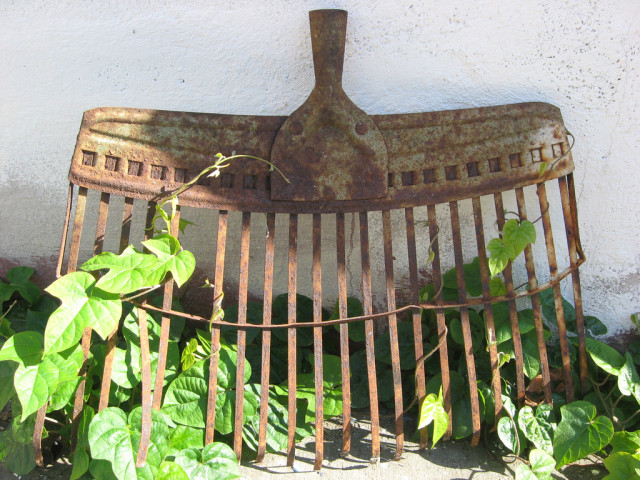 Garden tools are a must for your garden