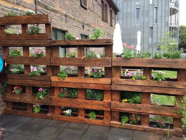 Hints on Creating a Wood Pallet Garden