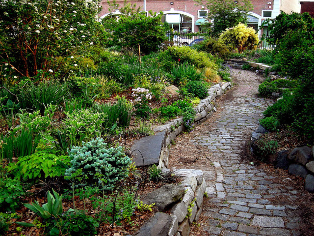 Grass-Friendly Ways to Clean a Garden Path
