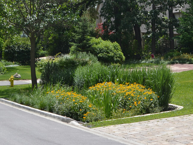 Things to Consider When Constructing a Rain Garden