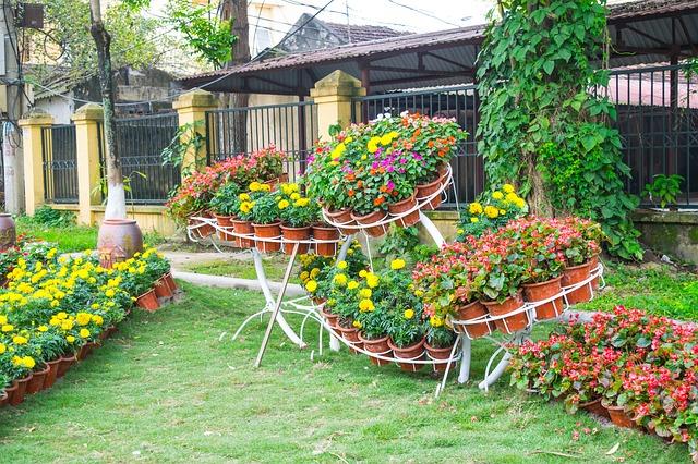 garden-721926_640