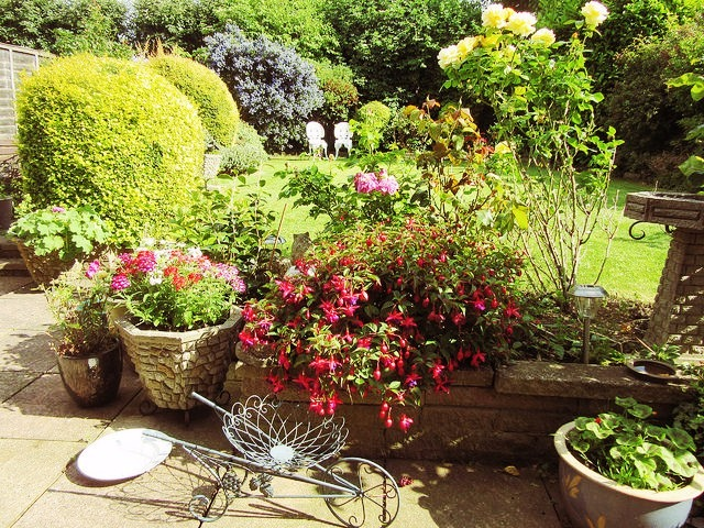 5 Gardening Trends for 2016
