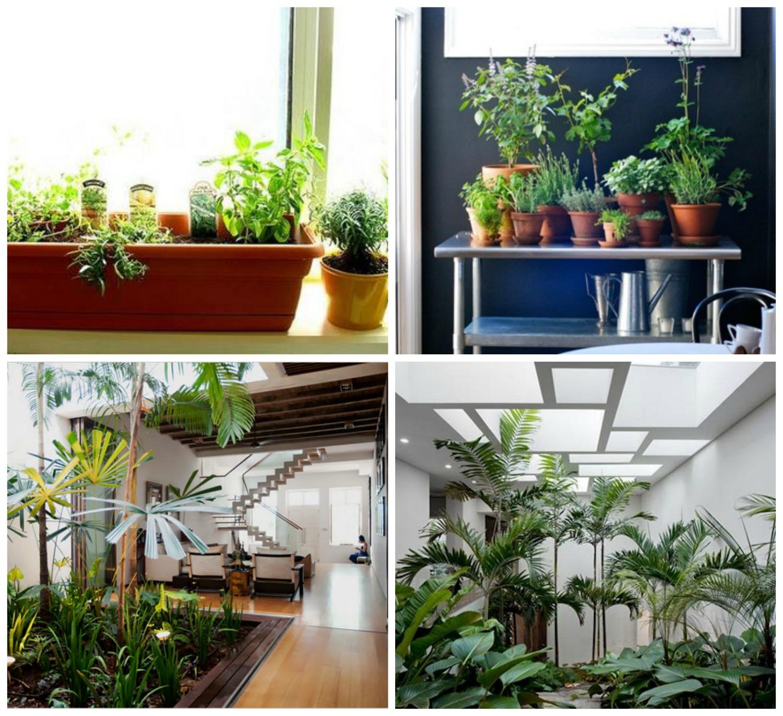 Indoor Gardening How To Control Humidity Gardening Better